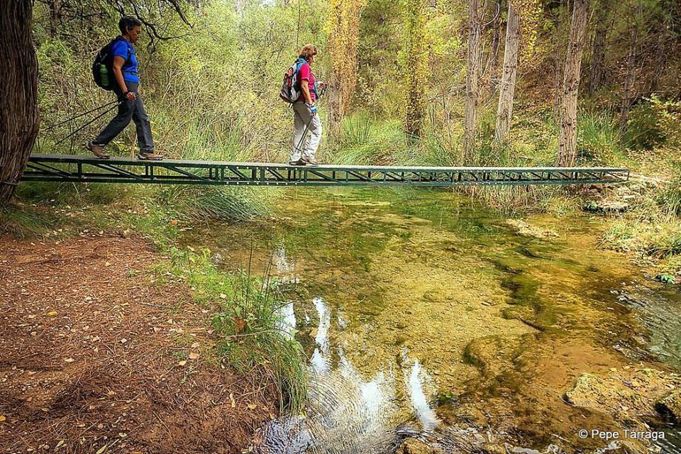 La imagen puede contener: una o varias personas, árbol, puente, calzado, exterior, naturaleza y agua