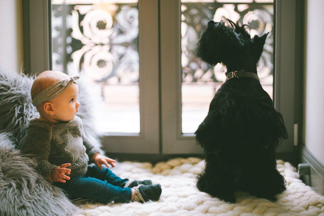 Child with dog.