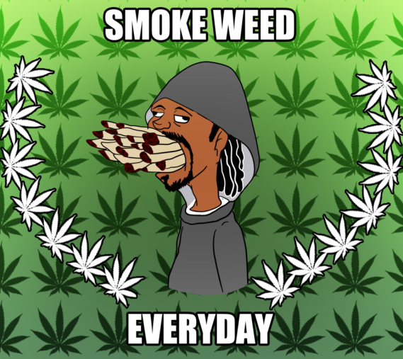 dont smoe weed everyday.png