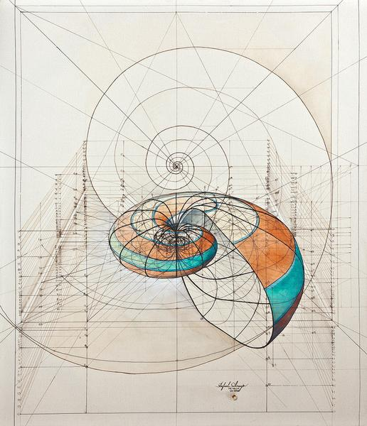 nautilus_1024x1024_0fdf0e62-a6ca-45a3-8f55-3e47793d5408_grande.jpg