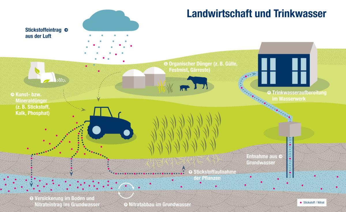In welcher Tiefe kommt das Grundwasser?