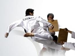 Taekwondo Martial Art - South Korea Tour