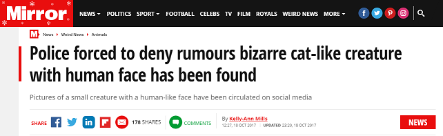 mirror news.png