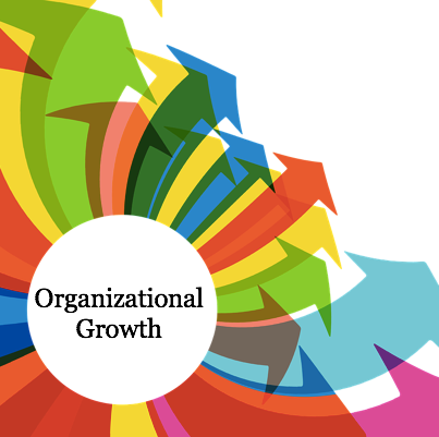 #review&reflect: Taking a Look Back to Take a Step Forward with Organizational Growth