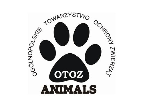 Znalezione obrazy dla zapytania animals organizacja