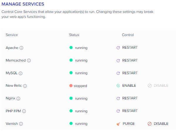 cloudways manage services