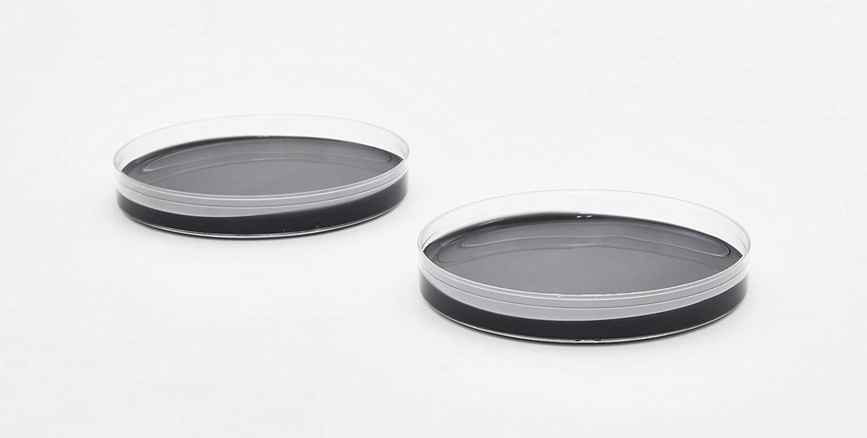 Uninoculated Buffered charcoal yeast agar