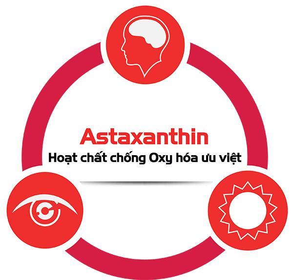 Liệu Astaxanthin có phải chất chống Oxy hóa hiệu quả - Tìm hiểu ngay