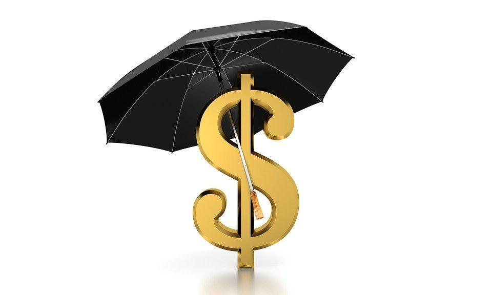 Umbrella, Dollar, Concept, Money, Business, Finance