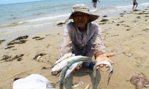 Nguồn ảnh: http://kienthuc.net.vn/