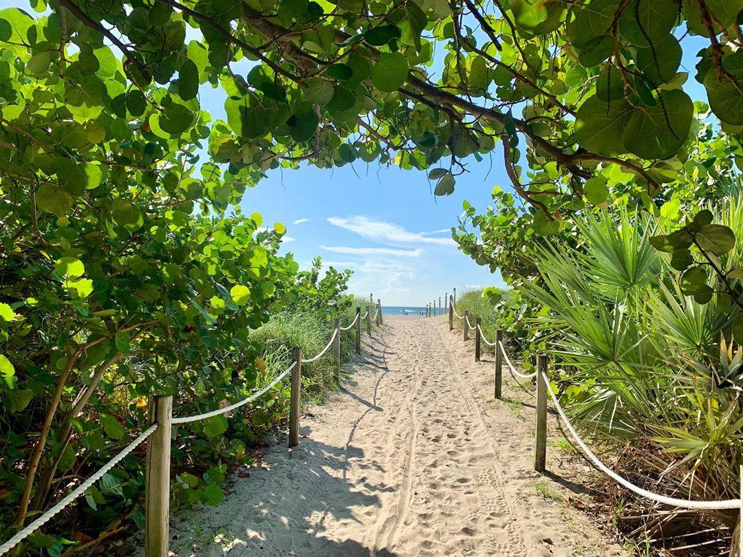Lush greenery pathway to the beach