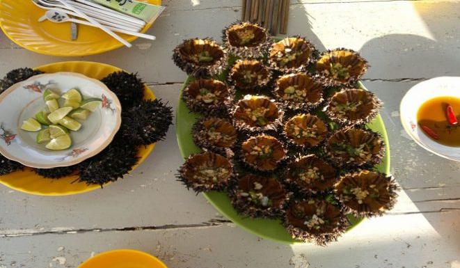 Đến với Phú Quốc nên thưởng thức các món ăn được chế biến từ Nhum