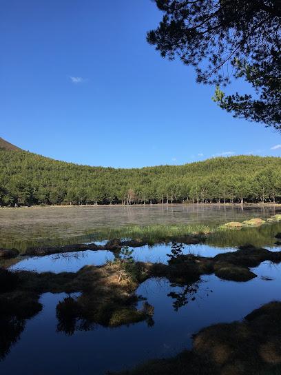 Laguna de Robledo