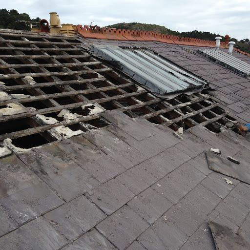 Expert Roofing and Gutters in Los Angeles, California
