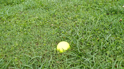Golf Driving Range «South Wales Golf Course», reviews and photos, 18363 Golf Ln, Jeffersonton, VA 22724, USA