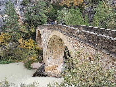 Bridge Peñalén