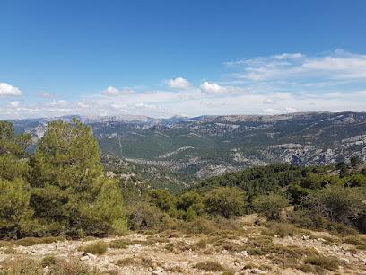 pico Gilillo