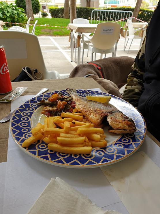 Restaurant Les Brises Plaça dels comptes de palamos 17230, 17230 Palamós, Girona