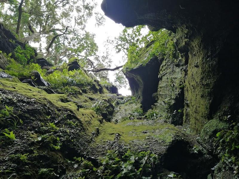 シカマガ滝