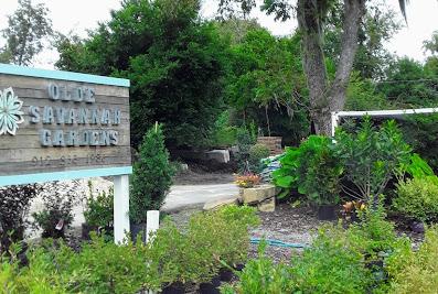 Olde Savannah Gardens