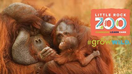 Zoo Little Rock Zoo