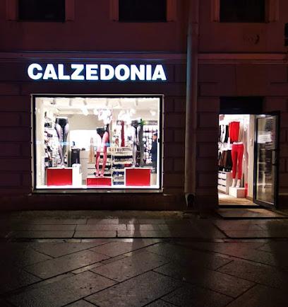 Магазины женского белья на карте спб как упаковать женское белье