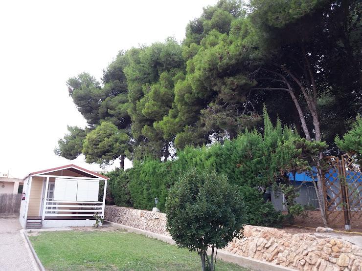 Camping Capfun L'Alba Carretera N-340, Km 1180, 43839 Creixell, T