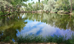 Mehraban Wetland Park
