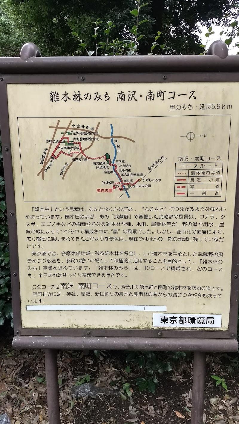 久留米 公園 東 竹林