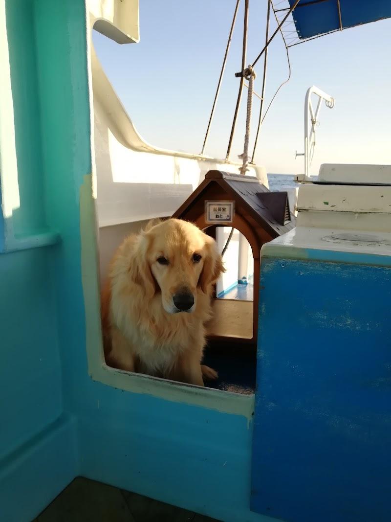 野島崎海底透視船乗船場所