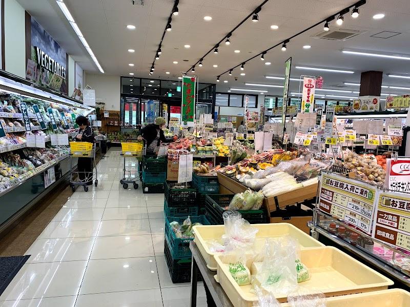 丸大 波平店