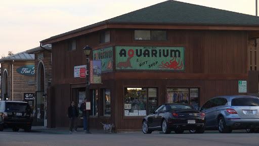 Aquarium «Morro Bay Aquarium and Gift Shop», reviews and photos, 595 Embarcadero, Morro Bay, CA 93442, USA