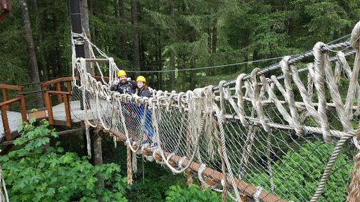 Tourist Attraction «ZiplineX Zip Line Tours», reviews and photos, 32016 NE Healy Rd, Amboy, WA 98601, USA