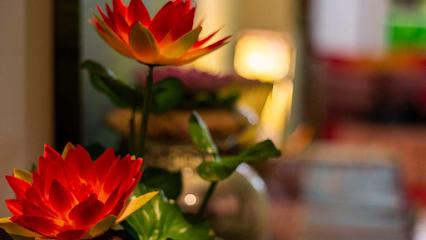 imagen de masajista Sasiton Thai Traditional Masaje & Therapy Palmanova