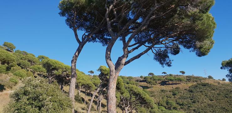 Mirador Sant Just Passatge Xaloc, 31, 08950 Esplugues de Llobregat, Barcelona