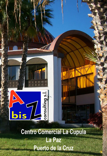 A bis Z Consulting