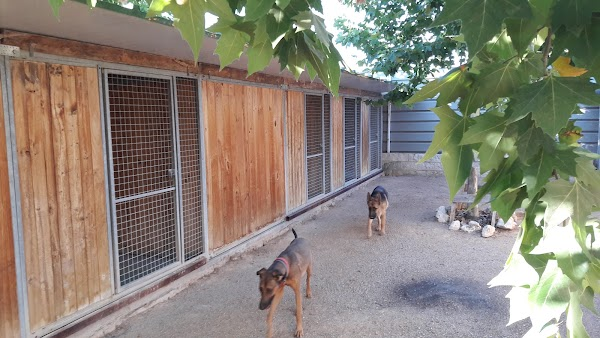 IBERCAN Servicios Caninos