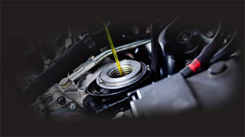 Oil Change Great Canadian Oil Change in Central Ave W () | AutoDir