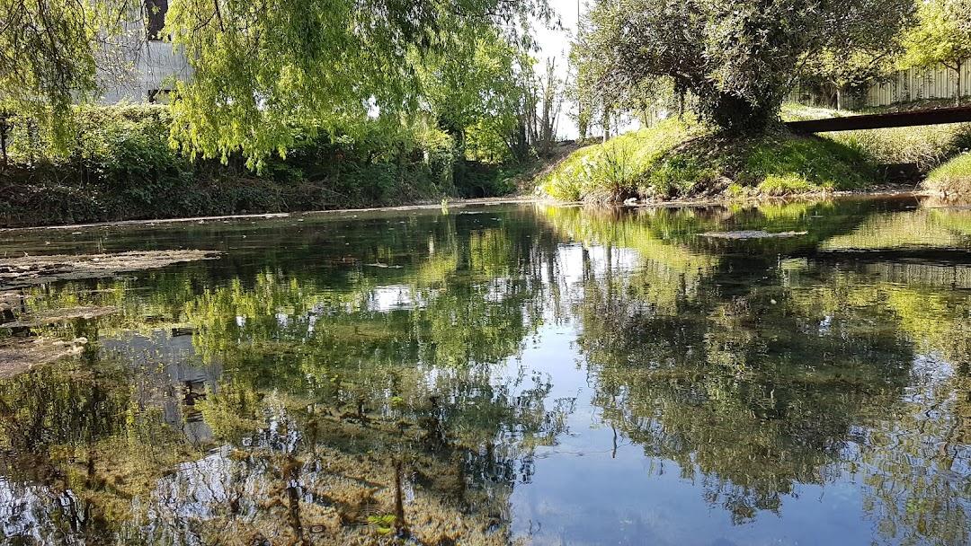 Risorgive del fiume Botteniga