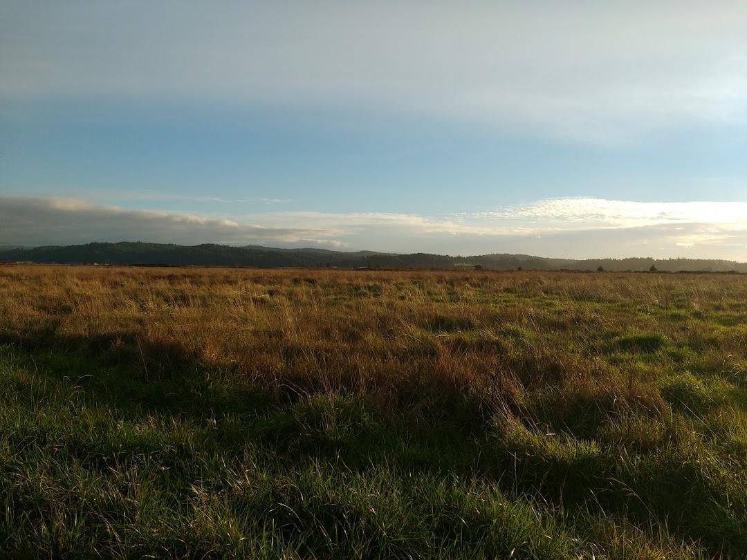 Fay Slough Wildlife Area
