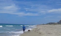 Sea Turtle Beach (Jensen Beach)