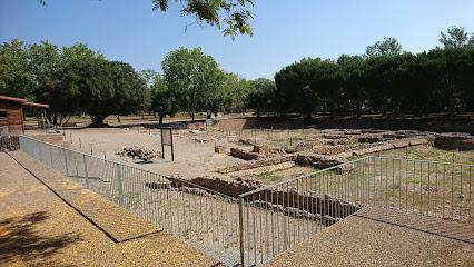 Museu d'Història de Cambrils - Vil·la Romana de la Llosa