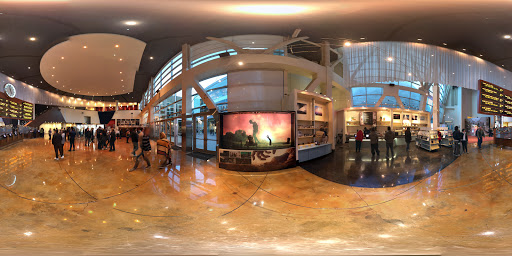 Movie Theater «ArcLight Hollywood», reviews and photos, 6360 Sunset Blvd, Los Angeles, CA 90028, USA