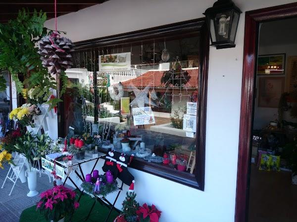 Blumen-Stand