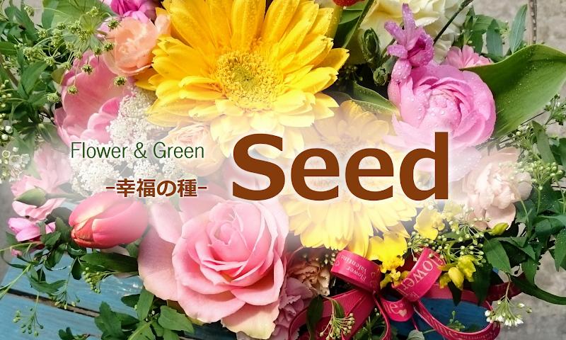 Flower&Green幸福の種Seed