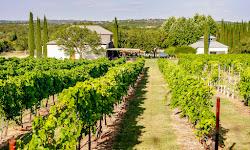 Stone House Vineyard