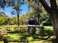 The Ultimate Guide To Adult Bouncy Castle Hire - Perth