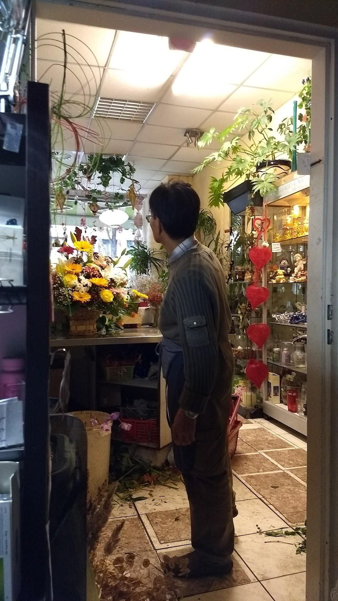 Blumen Lee In Der Stadt Berlin