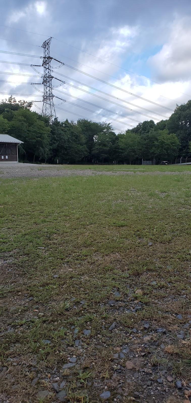 公園 池 場 わ キャンプ 自然 くつ