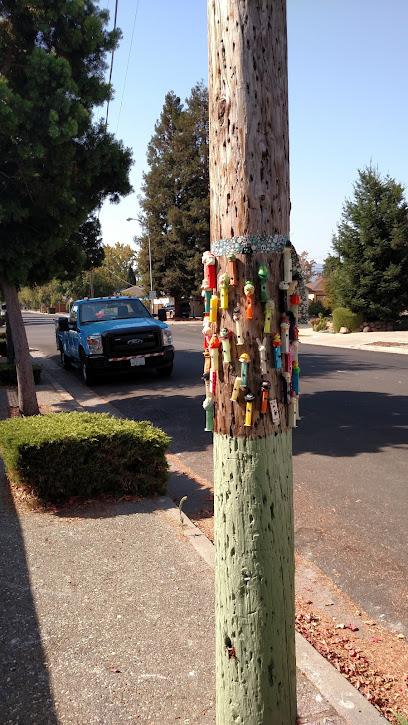 Sunnyvale Pez Pole